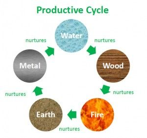 productive cycle